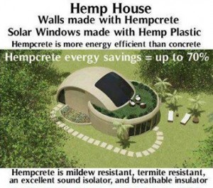"""Legalize research and cultivation of industrial hemp  (Hemp does not produce the """"high"""") So, why is it illegal? Because fuel companies would lose TRILLIONS in profit, while the quality of life for everyone else would rise dramatically. It would create millions of jobs, as well as make our reliance foreign fuels non-existent.   Some think that is the """"real reason"""" behind marijuana laws is so they can keep industrial hemp illegal despite it's many uses and positive impact it would have on our society.  Some estimate that the global market for hemp consists of more than 25,000 products in nine submarkets: agriculture; textiles; recycling; automotive; furniture; food/nutrition/beverages; paper; construction materials; and personal care. It can be grown as a fiber, seed, or other dual-purpose crop. Hemp fibers are used in a wide range of products, including fabrics and textiles, yarns and raw or processed spun fibers, paper, carpeting, home furnishings, construction and insulation materials, auto parts, and composites. The interior stalk (hurd) is used in various applications such as animal bedding, raw material inputs, low-quality papers, and composites. Hemp seed and oilcake are used in a range of foods and beverages, and can be an alternative food protein source. Oil from the crushed hemp seed is an ingredient in a range of body-care products and also nutritional supplements. Hemp seed is also used for industrial oils, cosmetics and personal care, and pharmaceuticals, among other composites.  http://www.nebraskaideas.com/agriculture-and-natural-resources/legalize-research-and-cultivation-of-industrial-hemp  Video::The Power of Hemp and its countless uses::    http://www.youtube.com/watch?feature=player_embedded&v=vZvFE53JzDk  Join us at::"""