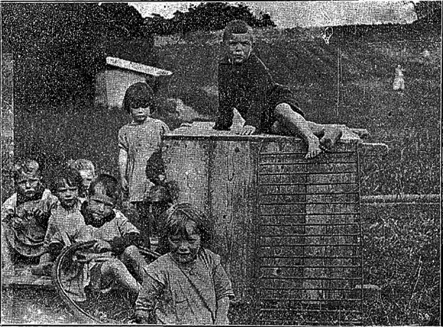 Children photographed in 1924 by the Connacht Tribune in Glenamaddy