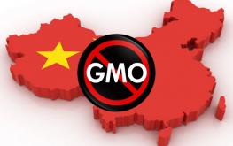 china country gmo 263x165 Experts Smash Untruths About Glyphosate, GMOs at Beijing Conference