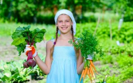 gardening organic kids 263x164 Societal Shift: Schools Begin Teaching Kids How to Grow Organic, Sustainable Food