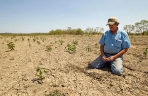 Texas-Drought-image-2