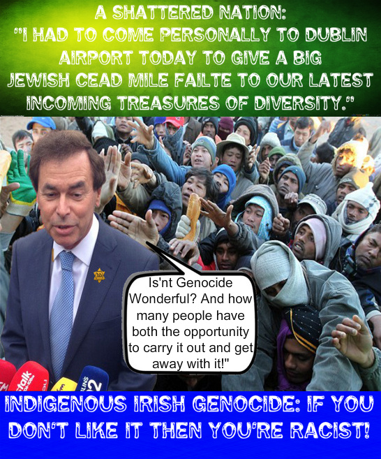 third world immigration ireland irish white genocide alan shatter