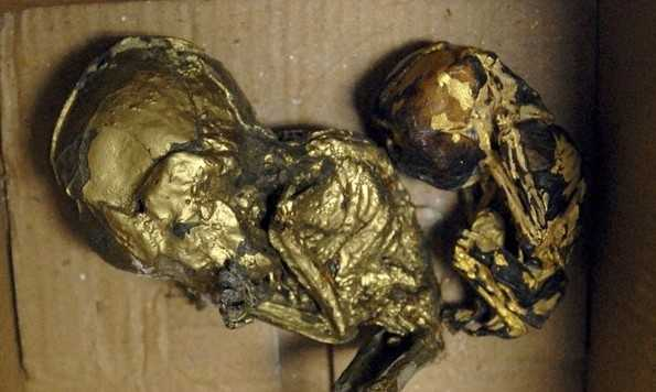 Thai Police Arrest UK Man After Finding ROASTED DEAD BABIES wrapped in GOLD LEAF