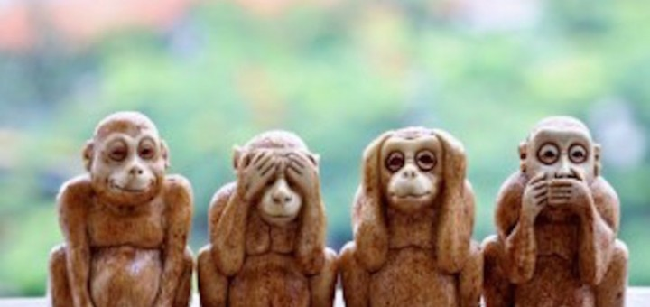 monkey people war preparedness