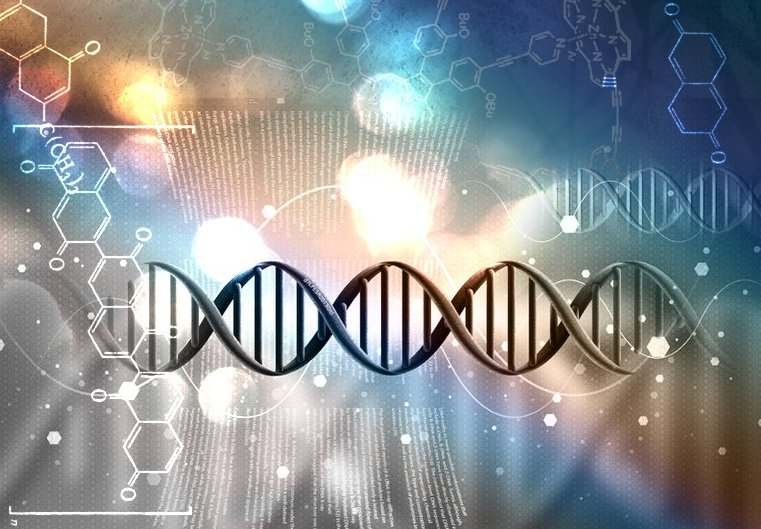 Frequency, DNA, And The Human Body