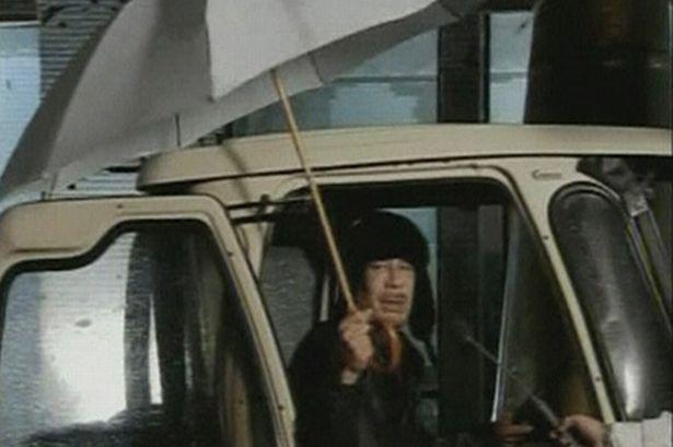 burningbloggerofbedlam-muammar-gaddafi