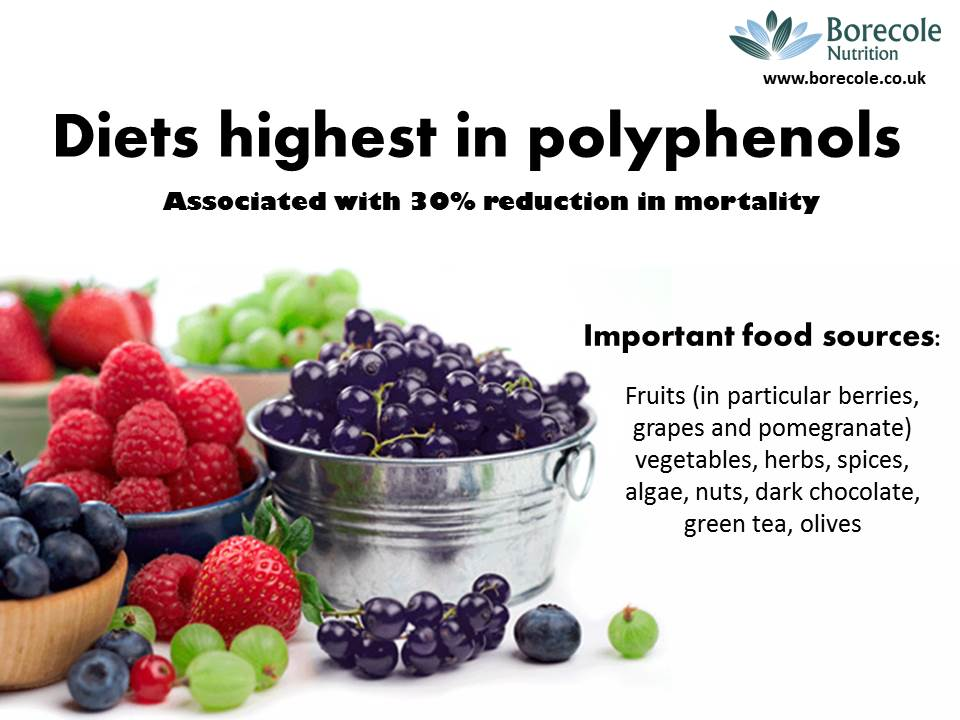 foods high in polyphenols pdf