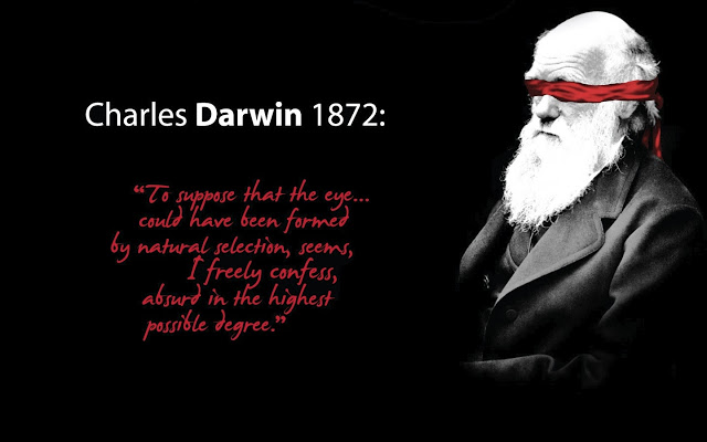 the theory and the facts about evolution of man Darwin and the theory of evolution  the theory of evolution affected not just scientific debate but was soon part  'man is not truly one, but.