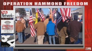 Hammond-freedom-Pete-Santilli-640