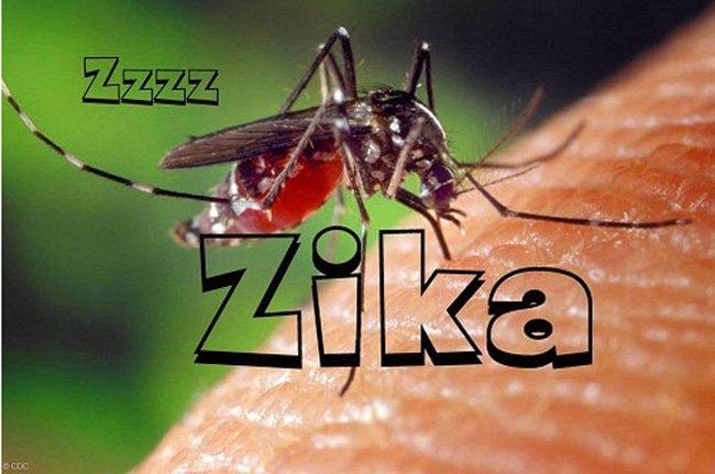 zika-290116-1454038427907