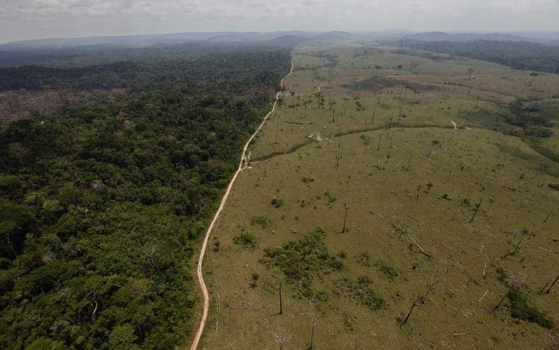 A road marks dividing the photo a stark contrast between a lush, green rainforest to its left and an almost completely deforested area to the right.