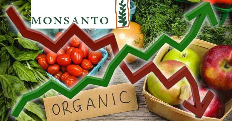 mansanto-sales-plummet-organic-skyrocket