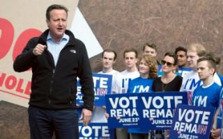David Cameron, the Prime Minister, is backing the Remain campaign