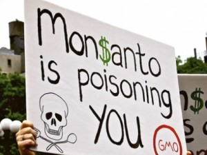 monsanto-poisoning-you
