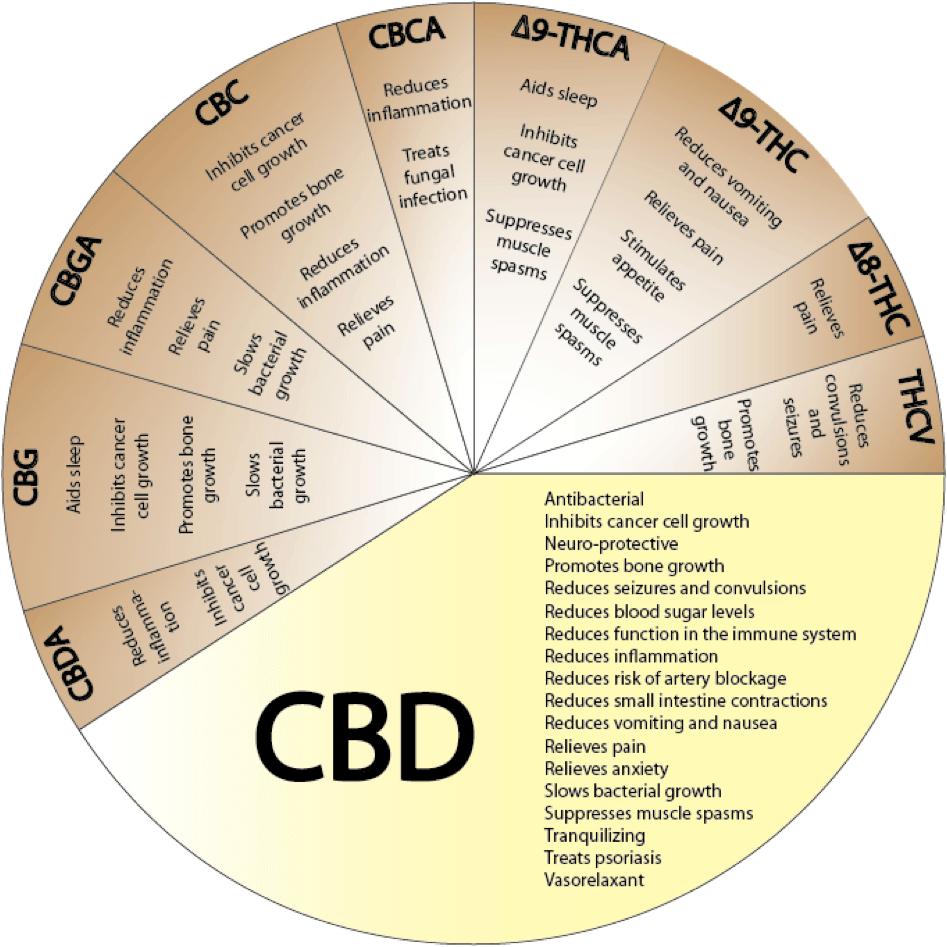 CBD benefits