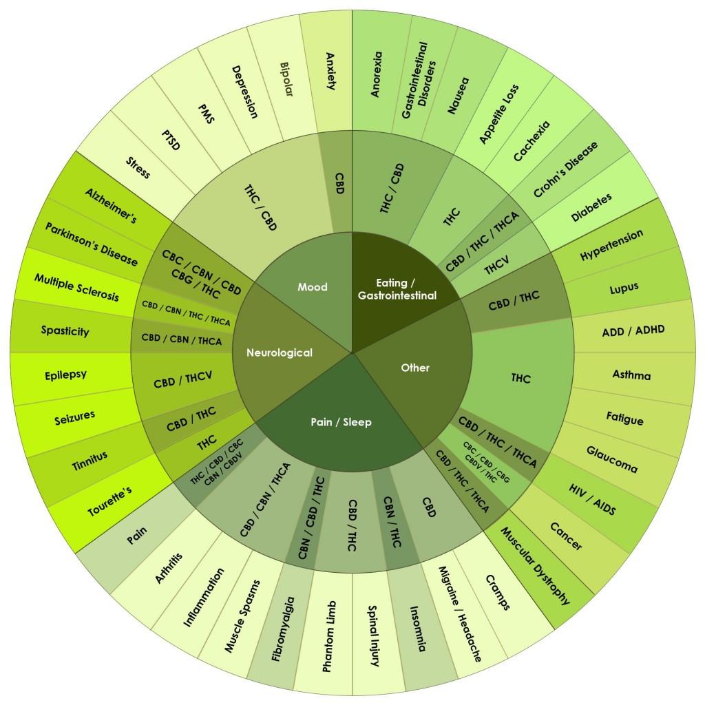 Cannabinoids-Infographic-Update-02-27-14