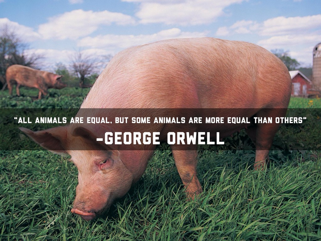 All animals are equal...