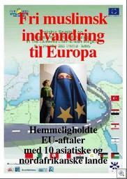 euromediterranean process
