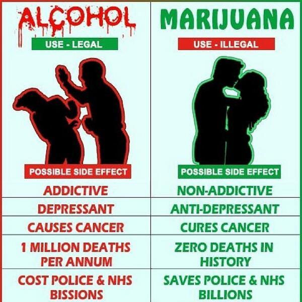 Is Marijuana Safer Than Alcohol    Smokazon Blog