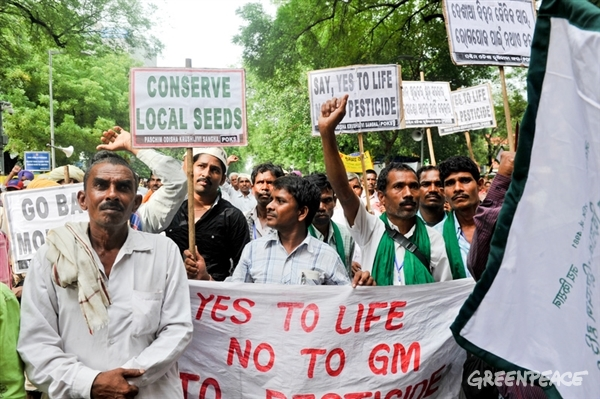Citizens across 20 states of India came together at Jantar Mantar for a day-long sit-in and marched towards the Parliament demanding immediate withdrawal of BRAI bill 2013. 8 Aug, 2013 © Karan Vaid / Greenpeace