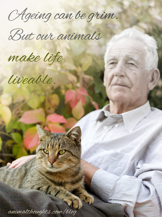 Image result for Elderly people with animals