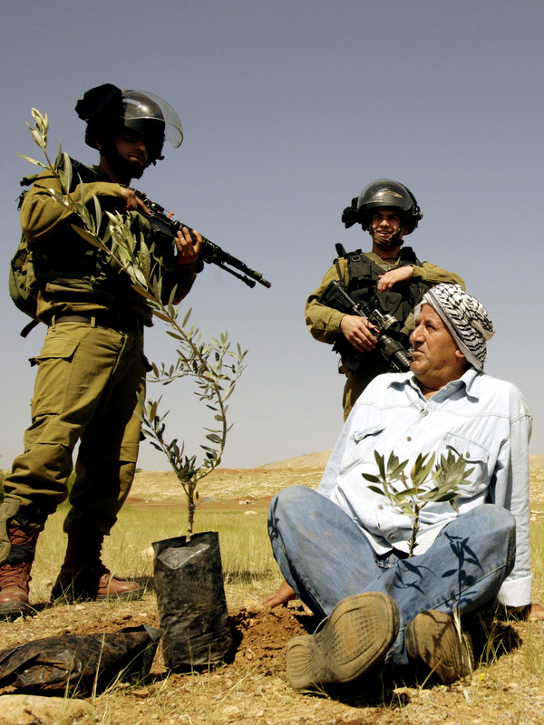 A Palestinian farmer looks at Israeli army soldiers after he planted an olive trees near the West Bank town of Tubas in the Jordan valley, during a protest against the closure of land to Palestinians by the army and Jewish settlers, Tuesday, April 8, 2014. (AP/Mohammed Ballas)