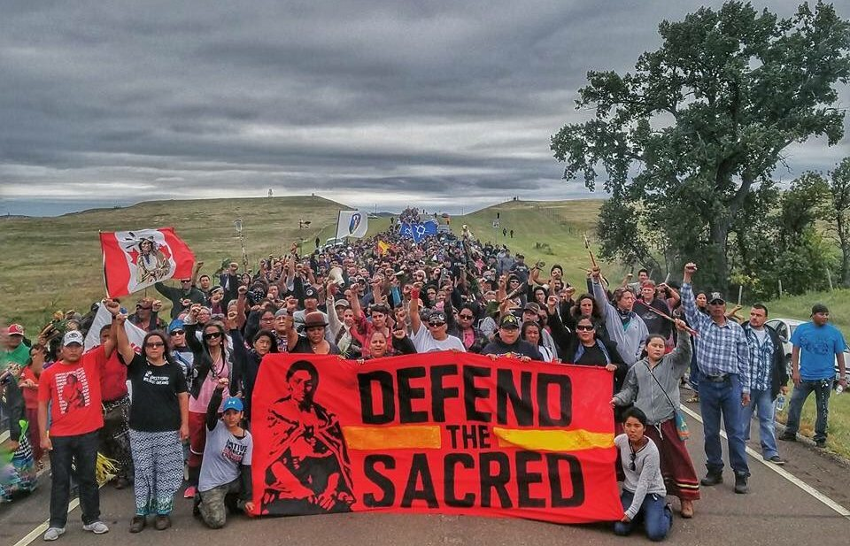 Image result for DAPL