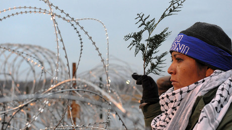 A woman holds a branch of cedar during a prayer ceremony on Backwater Bridge during a protest against plans to pass the Dakota Access pipeline near the Standing Rock Indian Reservation, near Cannon Ball, North Dakota, U.S. November 27, 2016. © Stephanie Keith