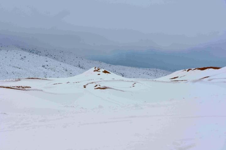 A metre of snow fell in some parts of the desert. Click to enlarge