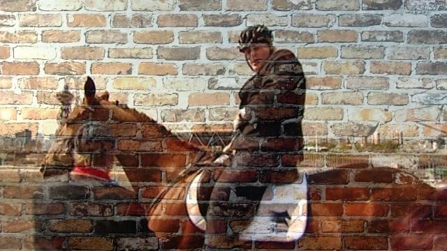boris horse 2