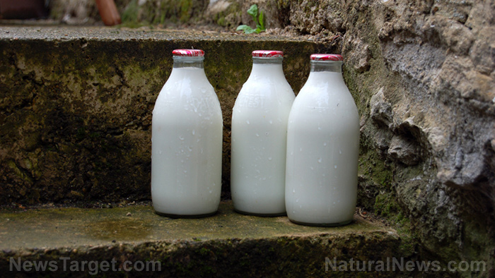 Image: Raw milk on trial in Ontario, court could permanently shut down sales