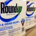 Roundup-and-cancer