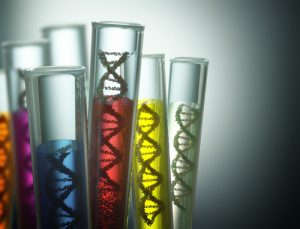 worldwide DNA database