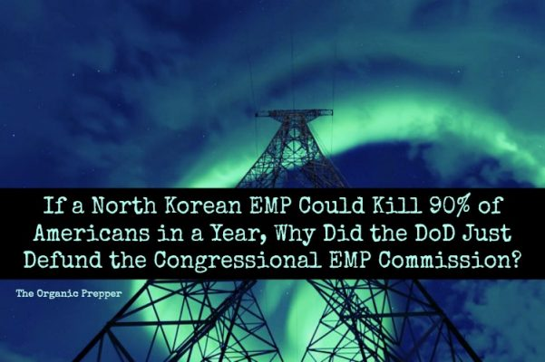 http://www.theorganicprepper.ca/wp-content/uploads/2017/10/Why-Did-the-DoD-Just-Defund-the-Congressional-EMP-Commission-601x400.jpg