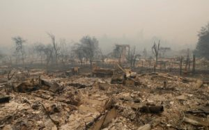 {focus_keyword} California Fires Engineered by Directed Energy ? scorched vineyard Sonoma CA
