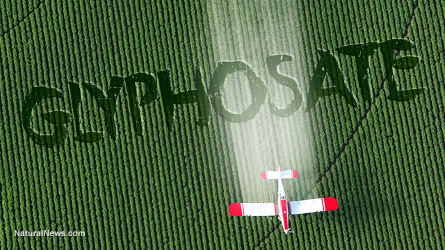 Image result for Glyphosate