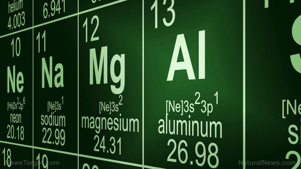 Image: Is Autism a side effect of metal toxicity? High aluminum concentrations discovered in brain tissue of autistic children