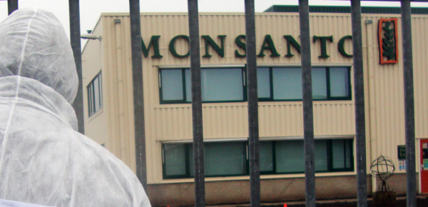 Image: Hundreds of lawsuits against Monsanto are moving forward
