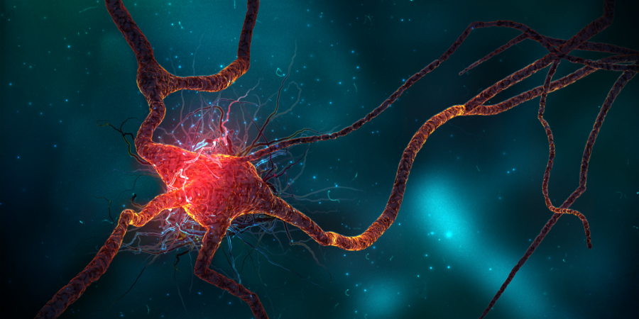 Image: Is treatment making it worse? DNA damage to brain cells can be caused by nanoparticles from medical treatments