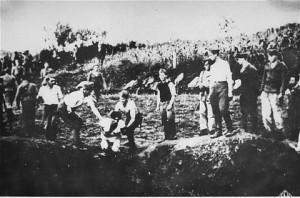 jasenovaccamp5