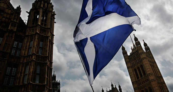 A member of public flies a giant Scottish Saltire flag outside the Houses of Parliament shortly before Scotland First Minister Nicola Sturgeon posed with newly-elected Scottish National Party (SNP) MPs during a photocall in London on May 11, 2015