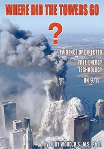 What 9/11 witnesses saw.