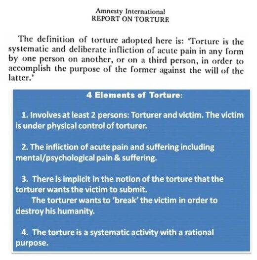 4 elements of torture
